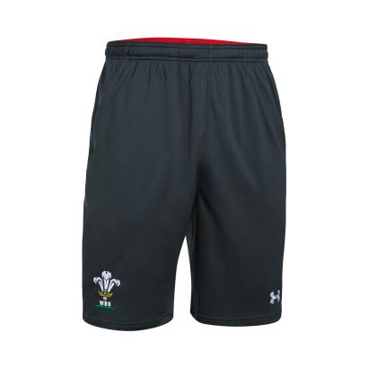 Wales Mesh Training Shorts Anthracite 2018 - Front