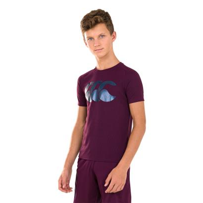 Canterbury Vapodri Poly Large Logo Tee Potent Purple Kids - Mode