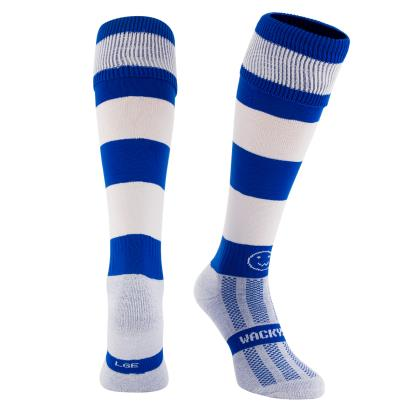 Royal/White Hooped WackySox Kids - Front